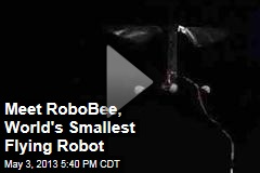 Meet RoboBee, World's Smallest Flying Robot
