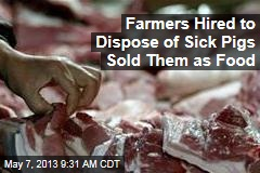 Farmers Hired to Dispose of Sick Pigs Sold Them as Food