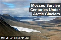Mosses Survive Centuries Under Arctic Ice