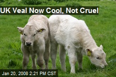 UK Veal Now Cool, Not Cruel