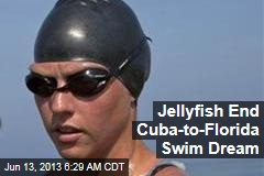Jellyfish End Cuba-to-Florida Swim Dream