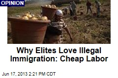 Why Elites Love Illegal Immigration: Cheap Labor