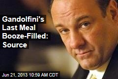 Gandolfini's Last Meal Booze-Filled: Source