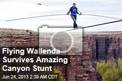 Flying Wallenda Survives Amazing Canyon Stunt