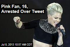 Pink Fan, 16, Arrested Over Tweet