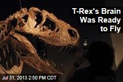 T-Rex's Brain Was Ready to Fly