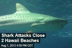 2 Shark Attacks Close Hawaii Beaches