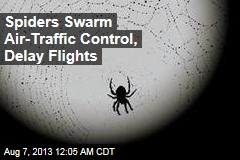 Flights Delayed— Due to Spider Bites