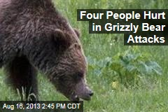 Four People Hurt in Grizzly Bear Attacks