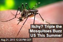 Itchy? Triple the Mosquitoes Buzz US This Summer
