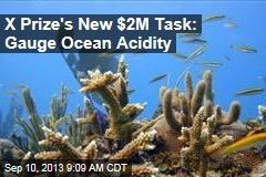 X Prize's New $2M Task: Gauge Ocean Acidity