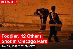 11 Adults, Toddler Shot at Chicago Park