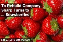 To Rebuild Company, Sharp Turns to ... Strawberries