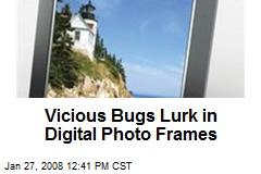 Vicious Bugs Lurk in Digital Photo Frames