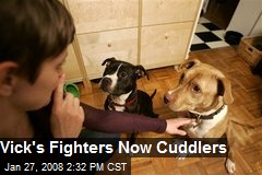 Vick's Fighters Now Cuddlers