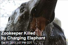 Zookeeper Killed by Charging Elephant
