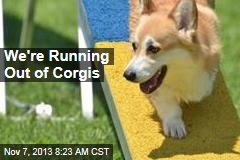 We're Running Out of Corgis