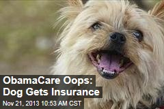 ObamaCare Oops: Dog Gets Insurance