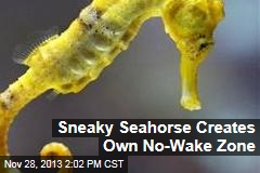 Sneaky Seahorse Creates Own No-Wake Zone