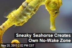 Sneaky Seahorse Creates Own No-Wake Zone