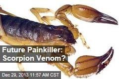 Future Painkiller: Scorpion Venom?