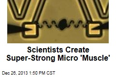 Scientists Create Super-Strong Micro 'Muscle'
