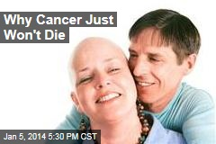 Why Cancer Just Won't Die