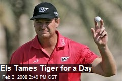 Els Tames Tiger for a Day