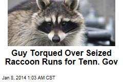 Guy Torqued Over Seized Raccoon Runs for Tenn. Gov