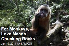 Monkey Courtship Trick: Chucking Rocks