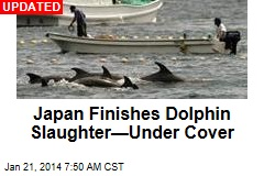 Japan Launches Dolphin Slaughter