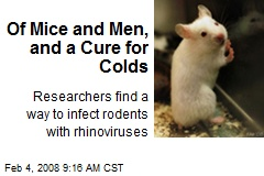 Of Mice and Men, and a Cure for Colds