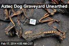 Aztec Dog Graveyard Unearthed