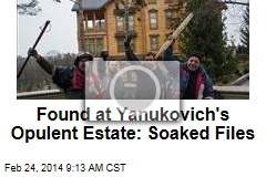Found at Yanukovich's Opulent Estate: Soaked Files