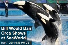 Bill Would Ban Orca Shows at SeaWorld