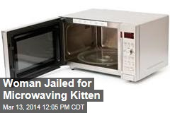 Woman Jailed for Microwaving Kitten