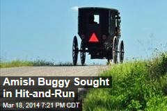 Amish Buggy Sought in Hit-and-Run