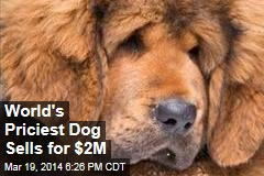 World's Priciest Dog Sells for $2M