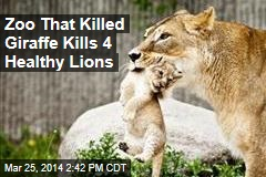 Zoo That Killed Giraffe Kills 4 Healthy Lions