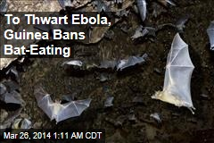 To Combat Ebola, Bat-Eating Banned