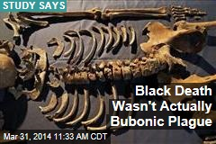 Black Death Wasn't Actually Bubonic Plague
