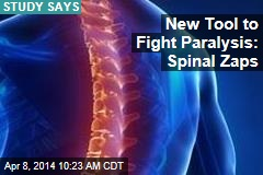 New Tool to Fight Paralysis: Spinal Zaps