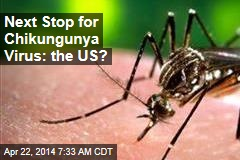 Tropical Chikungunya Virus Poised to Invade US