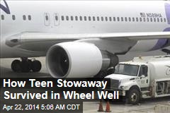 How Teen Stowaway Survived in Wheel Well