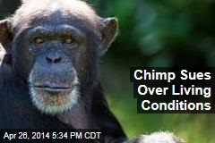 Chimp Sues Over Living Conditions