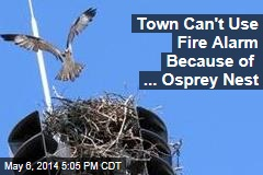 Town Can't Use Fire Alarm Because of ... Osprey Nest