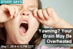 Yawning? Your Brain May Be Overheated