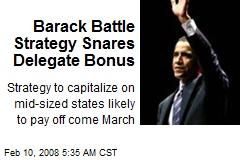 Barack Battle Strategy Snares Delegate Bonus
