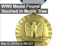 WWII Medal Found Stashed in Maple Tree