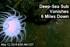 Deep-Sea Sub Vanishes 6 Miles Down